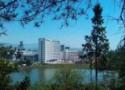 泰興市向陽美術學校