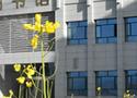 甘肅冶金技師學院