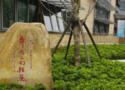 上海市戲劇學院附屬舞蹈學校
