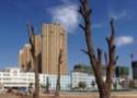 阜新市第一中等職業技術專業學校